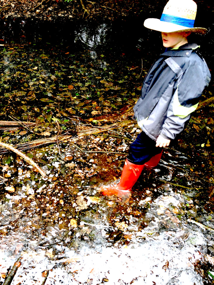 Boy - Epping Forest Ranger