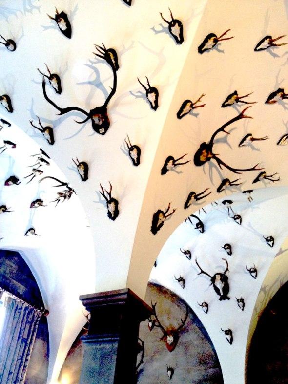 Horney Ceiling