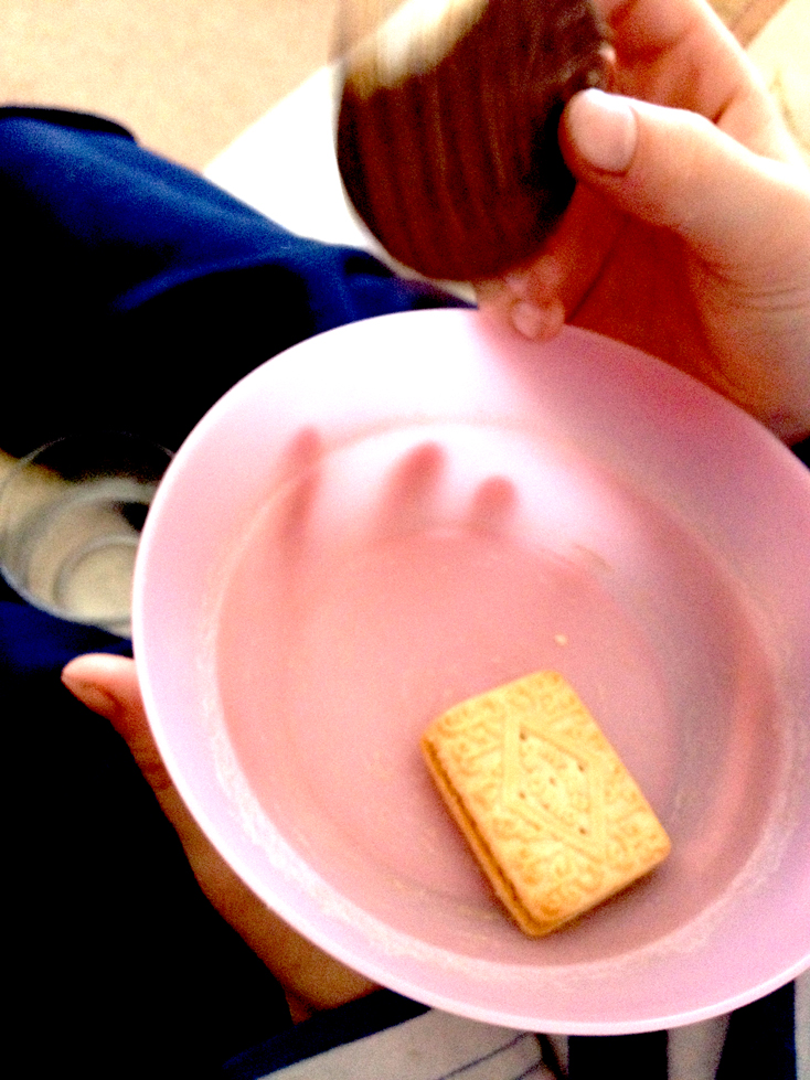 Pink Plastic and Custard Creams